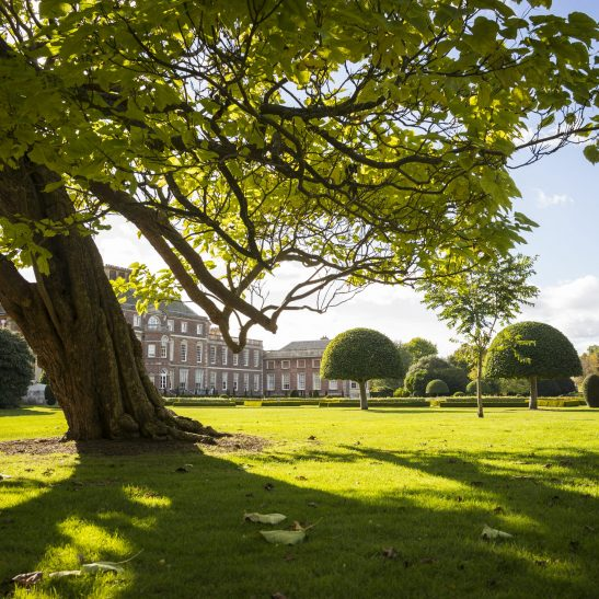 The parkland on a bright autumn morning at Wimpole, Cambridgeshire